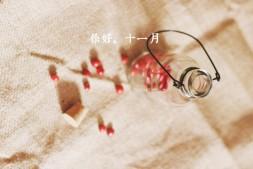【有声年历】-十一月