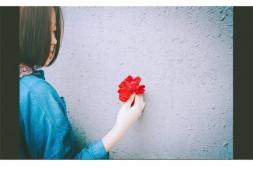 【遇见·晚安】你好,再见(第八天)-夏小